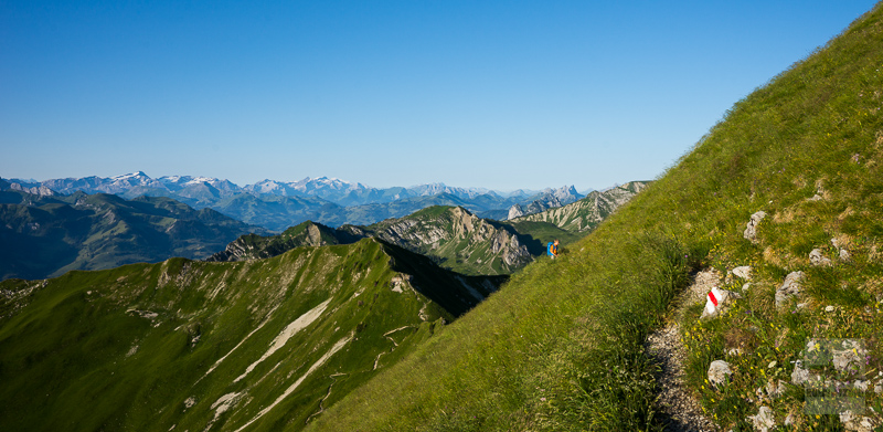 Schibespitz (Blick ins Saaneland)