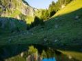 Alp Obernünenen (Spiegelung)