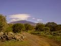 Piano dei Grilli (Etna, Bronte)